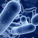 Biomed Argento Colloidale Puro: recensioni e prezzi